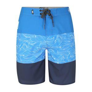 Picture Organic Clothing Športové plavky - spodný diel  modré / tmavomodrá / svetlomodrá