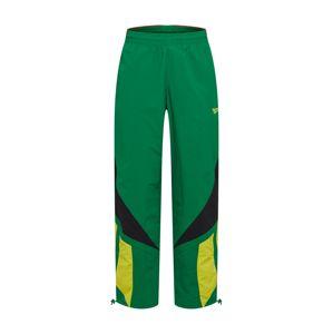 Reebok Classic Športové nohavice 'CL INTL SPORT TWIN'  farby bahna / žlté / zelená